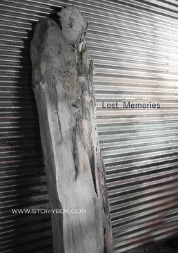 Lost Memories-Steel Background