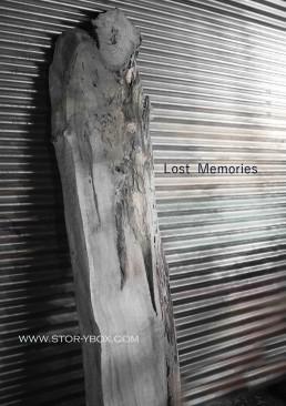 Lost Memories-Steel Background